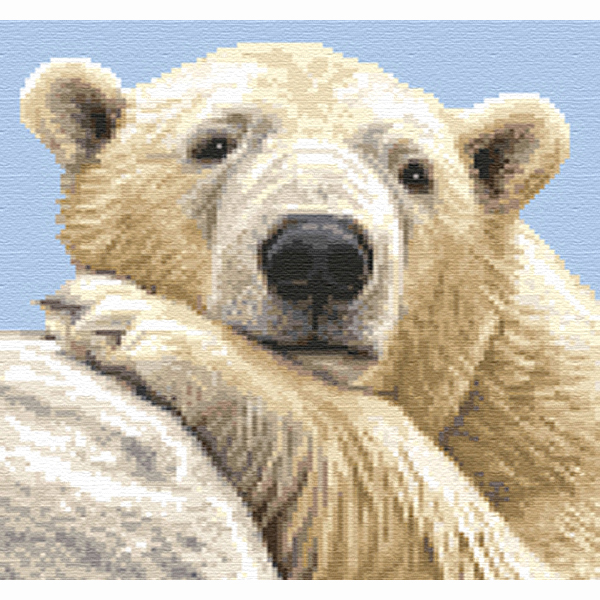 A SQ PBR 1 Polar Bear